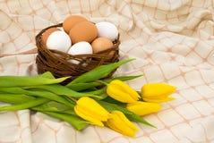 łozinowi koszykowi jajka fotografia stock