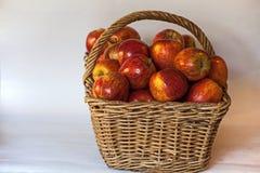 Łozinowy kosz czerwoni Starking jabłka 1 Zdjęcia Royalty Free