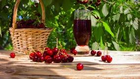 Łozinowy kosz na drewnianym stole z czerwoną wiśnią, wiśniami piękną świeżą, dojrzałą, soczystą,/ zdjęcie wideo