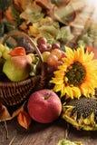 Łozinowy kosz pełno jesieni owoc obrazy royalty free