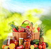 Łozinowy kosz z świeżymi organicznie warzywami zrównoważona dieta Fotografia Royalty Free