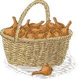 Łozinowy kosz z żarówki cebulą Zdjęcie Stock