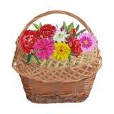 Łozinowy kosz z kwiatami, wektor odizolowywał ilustrację ilustracji