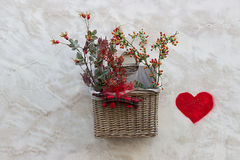 Łozinowy kosz z roślinami dołączać ściana Fotografia Stock