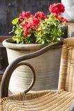 Łozinowy krzesło z czerwonymi kwiatami Zdjęcia Royalty Free