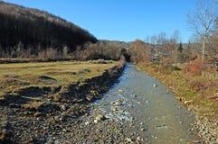 łuk rzeka diagonalna lasowa zdjęcie stock