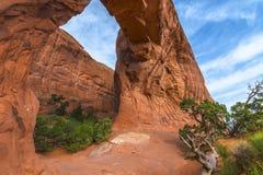 łuk wysklepia Moab park narodowy sosny Utah Obrazy Royalty Free