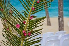 Łuk z kwiatami na tropikalnym morzu obraz stock