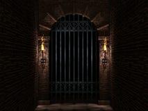 Łuku i żelaza kasztelu brama Obraz Stock