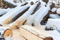 Łupka na śniegu zakrywającym z śniegiem obrazy stock