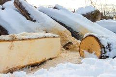 Łupka zakrywająca z śniegiem obraz stock