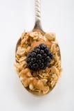 łyżka granola Zdjęcie Royalty Free