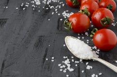 Łyżka z solankowymi i surowymi pomidorami na zmroku stole karmowa ilustracyjna kuchenna przygotowania wektoru kobieta fotografia stock