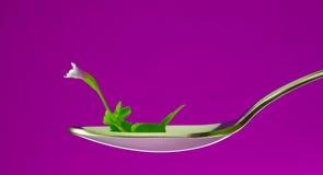 łyżki sprout Obrazy Royalty Free