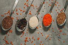Łyżki z superfoods - lnów ziarna, sezam, pieprz, czerwone soczewicy fotografia stock