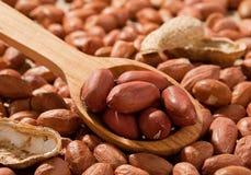 łyżkowy arachidu drewno Fotografia Stock