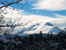 Łydkowa kontusz góra, zima Obrazy Stock