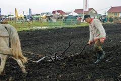 Łyknięcie konia pulles lemiesz przez pola Fotografia Royalty Free