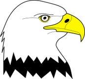 Łysego orła portret - wektorowa ilustracja Fotografia Royalty Free