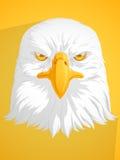 łysego orła wektor Zdjęcie Stock