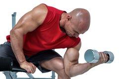 Łysy mężczyzna ćwiczy z dumbbells podczas gdy siedzący na ławki prasie Obrazy Stock