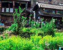 Œa för Lijiang rapeï¼ lott av Royaltyfri Fotografi