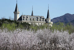 ¼ ŒBeijing del ï del hotel del castillo imagen de archivo