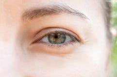 œil bleu d'oeil de femme beau jeune? photos libres de droits