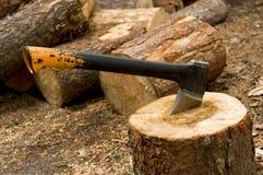 ścięty drewno Obrazy Stock