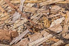 Ściśnięty budowy drewna zakończenie w górę widoku zdjęcia royalty free
