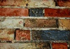 Ściana barwiona cegła jest dekoracyjna Obraz Royalty Free