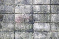Ściana betonowych płytek dekoracyjne cegły textural skład obrazy royalty free