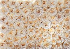Ściana biała księga kwiaty przygotowywa dla wakacje fotografia royalty free