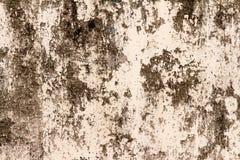 ściana brudna farba brudna ulicy ściana _ Tło Zdjęcia Royalty Free
