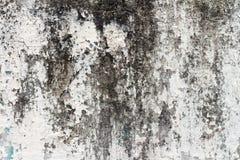 ściana brudna farba brudna ulicy ściana _ Tło Obrazy Royalty Free