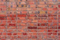Ściana czerwone cegły Zdjęcie Royalty Free