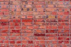 Ściana czerwone cegły Obraz Royalty Free