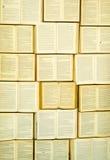 Ściana książki -2 fotografia royalty free