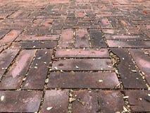 Ściana piasek tekstury szczegół Obraz Royalty Free