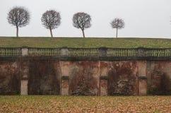 Ściana w mgle blisko Marglistego pałac peterhof Rosja Zdjęcie Royalty Free