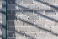 Ściana z cegieł światło słoneczne Zdjęcia Stock