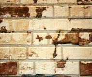 Ściana z cegieł biała cegła z brown punktami Tło Zdjęcia Royalty Free