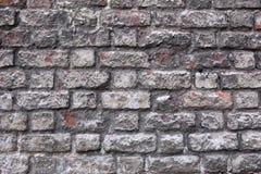 Ściana z cegieł tekstura Obraz Stock