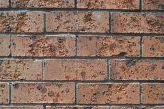 Ściana z cegieł z erozją obraz royalty free