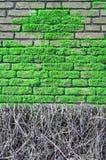 Ściana z cegieł zakrywający z muczeniami zdjęcia royalty free