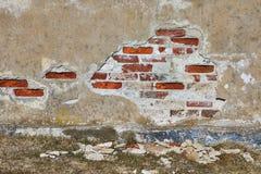 Ściana z cegieł zbliżenie obrazy royalty free