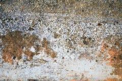 Ściana z starym podławym tynkiem, farbą i foremką, fotografia royalty free