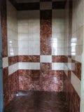 Ściana zakrywająca z płytkami Obraz Royalty Free