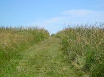ścieżka łąkowa Obrazy Royalty Free