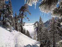 ścieżka śnieg fotografia stock